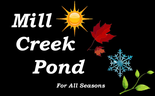 <Strong>Mill Creek Seasons</Strong>